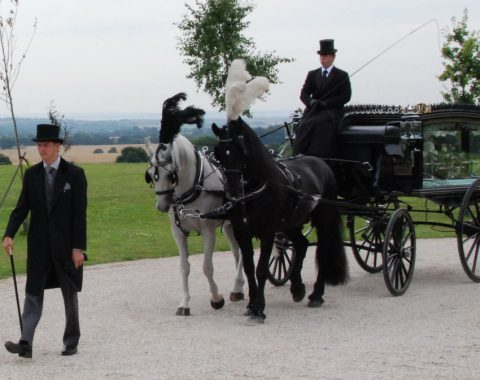 horses and carriage funeral procession